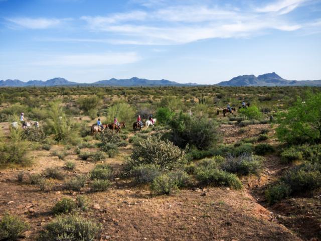 horseback ride at Fort McDowell Adventures